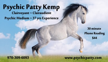 art horse grey rearing