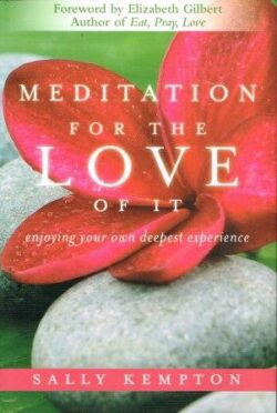 A photo of Meditation For The Love Of It